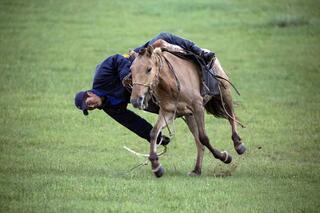 Atlar ülkesi Moğolistan