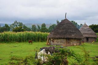 Ethiopyada geleneksel mimari yaşatılıyor