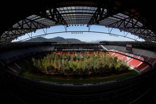 Futbol sahasını ormana dönüştürdü