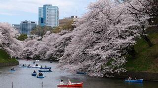 Japonyada en çok Türkiye aranıyor