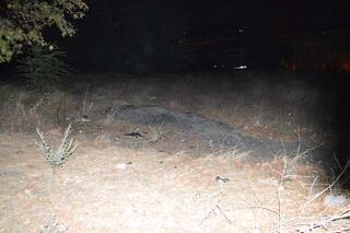 Gaziosmanpaşa'da çıkan yangında şüpheli bir erkek cesedi bulundu