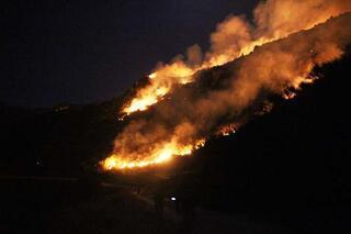 Bodrumda makilik alanda korkutan yangın