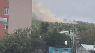 Son dakika | Pendikte korkutan orman yangını
