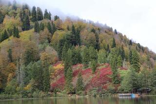 Borçka Karagölün sonbahar güzelliği