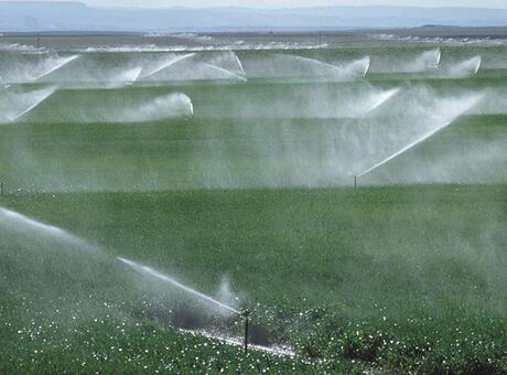 Tarımsal sulamaya 8,5 milyar lira kaynak ayrıldı