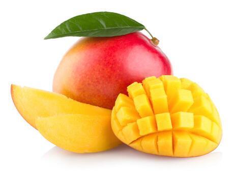 Mango Nasıl Yetiştirilir? Mango Nasıl Çimlendirilir?
