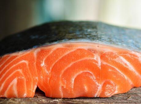 Somon Balığı Nedir? Nerelerde Yaşar Ve Kısaca Özellikleri Nelerdir?