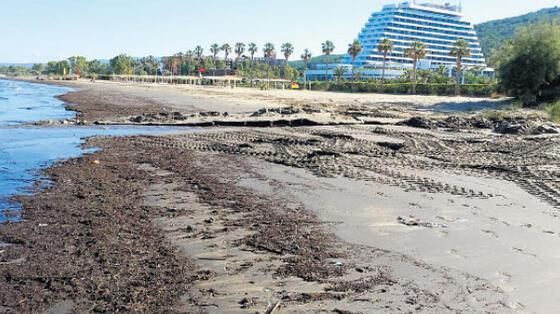 Ülke turizmine ve tarım alanlarına zarar veriyor