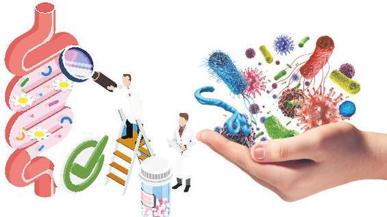 Mikrobiyota için öneriler