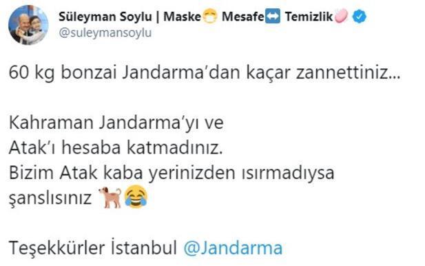 Son dakika... Bakan Soylu görüntüleri paylaştı Jandarma ve Atak yakaladı