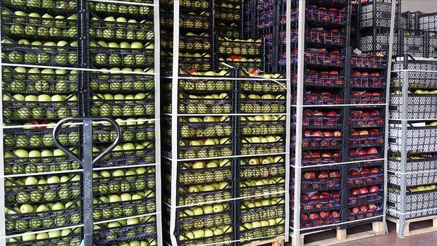 Yaş meyve sebze ihracatına Doğu Akdeniz |||damgası|||