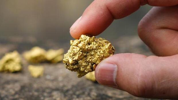 Kuyular açıldı! TMSF`den altın müjdesi