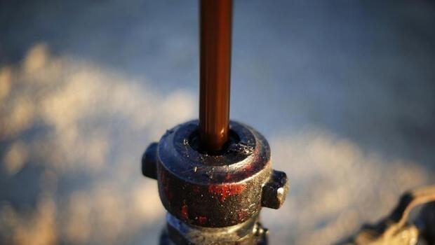 Petrol ithalatı ağustosta geriledi