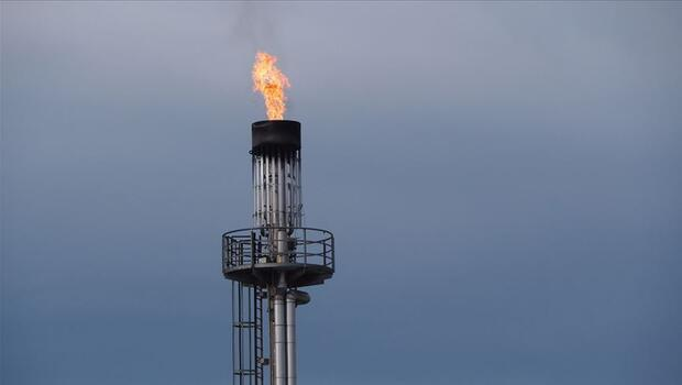 Küresel gaz talebinde bu yıl artış bekleniyor