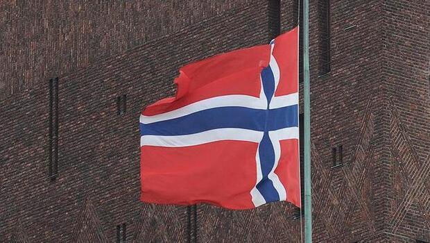 Norveç Varlık Fonu 123 milyar dolar kar açıkladı