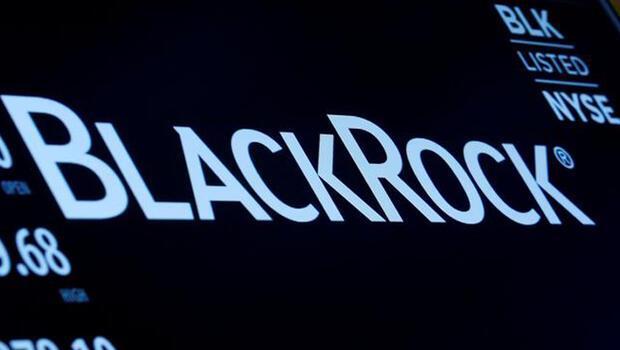 BlackRock ilk çeyrekte karını artırdı