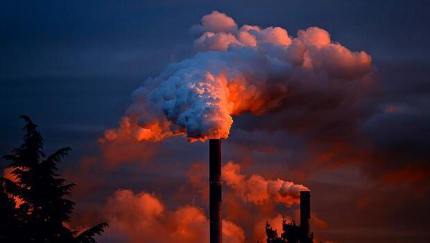 Fosil yakıtların tüketimdeki payı değişmedi