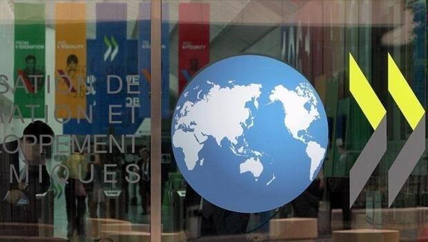 OECD gelişmiş ülkeleri uyardı
