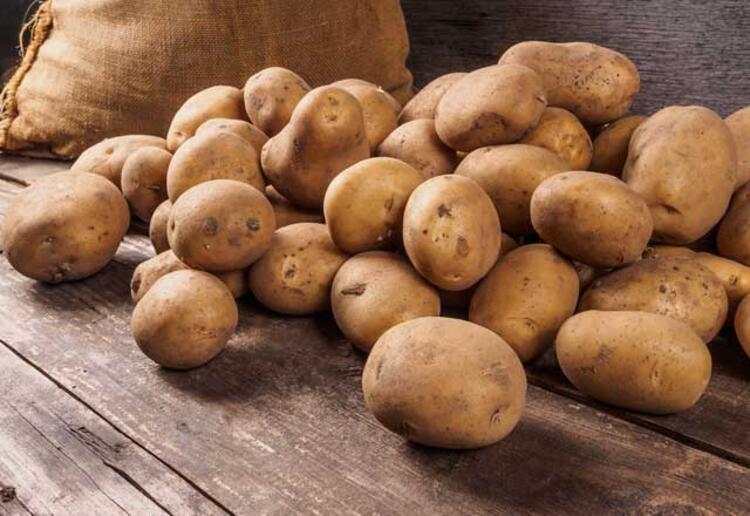 Domates ve patates