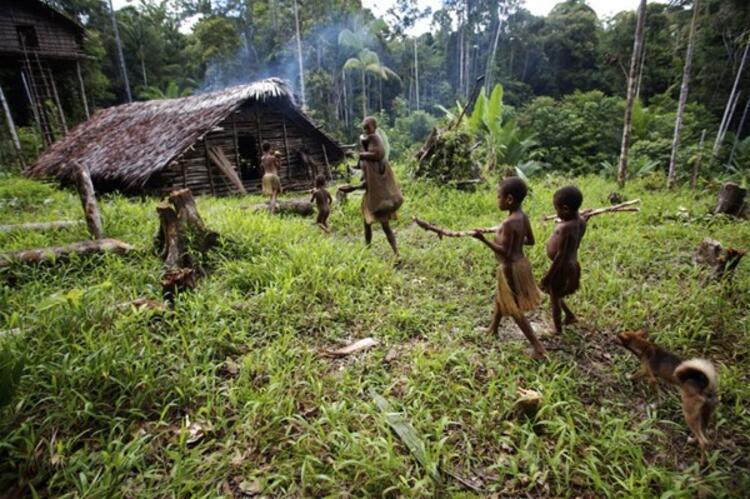 Yıllardır ağaçta yaşayan son ilkel kabile - Son Dakika Yaşam Haberleri