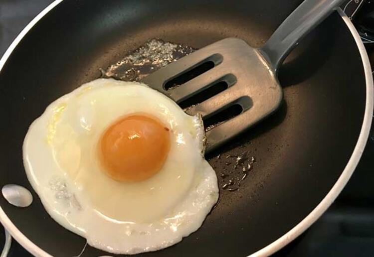 Doğal ortamda, doğal şekilde beslenmiş olan tavukların yumurtası da doğal ve sağlıklı olduğundan kan kolesterolünü düşürür. Yumurta, diyet yapanlar için kilo vermeye yardımcı en önemli besinlerden biridir. Yumurtayı pişirirken de dikkat edilmesi gereken noktalar vardır.Yumurta suda kayısı kıvamında olacak şekilde haşlanmalıdır. Veya tereyağı kullanılarak omlet yapılabilir, sevenler için menemen şeklinde tüketilebilir. Katı bir şekilde pişirilen yumurta kanserojen yapıda bulunmaktadır.Günlük tüketilmesi gereken yumurta miktarı nedir