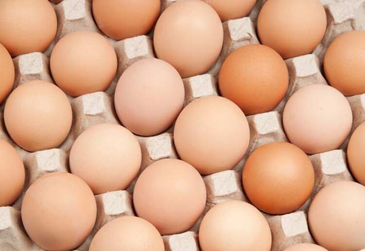 Kahvaltıların olmazsa olmazı yumurtanın hem sarısı hem de beyazı içerdikleri vitaminler sayesinde oldukça faydalıdır. Yumurtanın sarı kısmında bulunan kolin maddesi karaciğerin yağlanmasını engelleyen çok önemli bir besindir.Günlük olarak 9-10 tane yumurta yenebilir hiçbir zararı yoktur, rahatlıkla tüketilebilir. Yumurtanın sarı kısmında 150mg. kolesterol içermektedir.İşte Canan Karatay'ın Diyet Listesi: