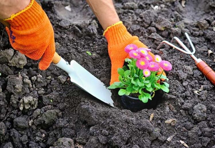 Gübreli toprak yöntemi