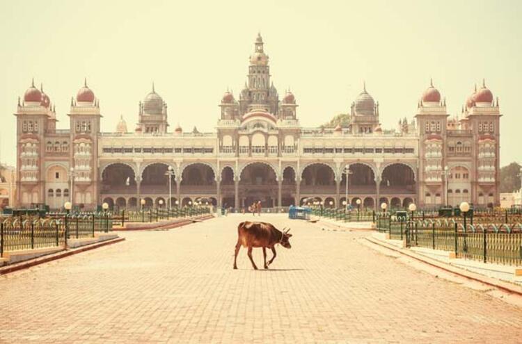 5. Banglore, Hindistan