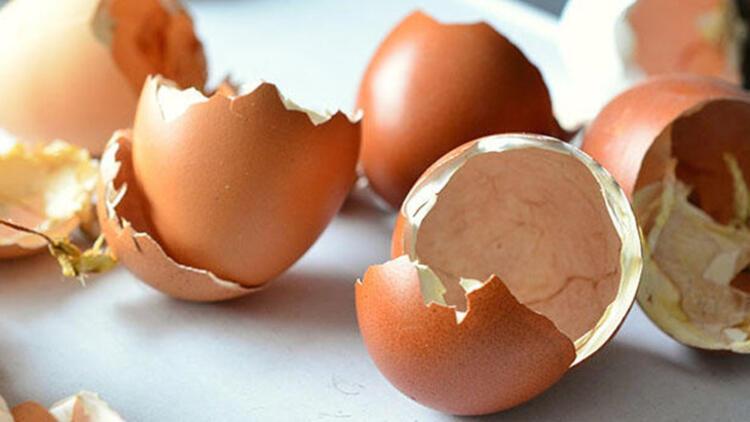 Yumurta kabuğundan gübre yapımı