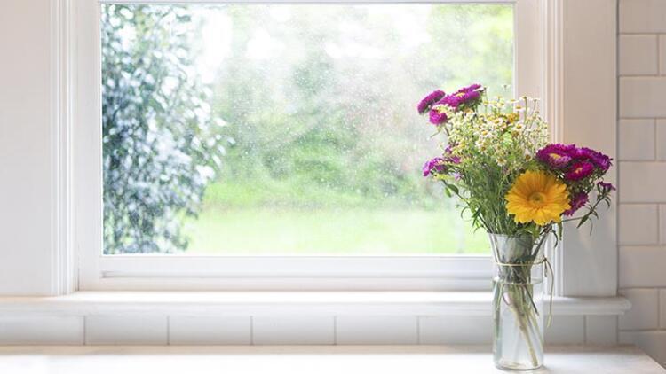 Çiçekler konsantrasyonu sağlar