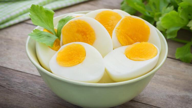 4-Protein ve lif önemli