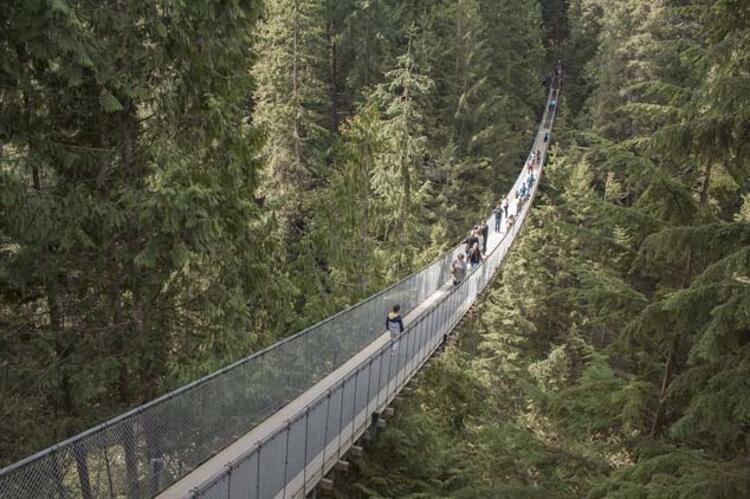 Capilano Asma Köprüsü, Kanada