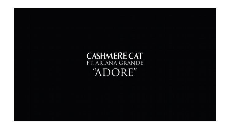 Cashmere Cat ft. Ariana Grande - Adore