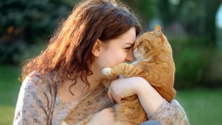 Kedi besleyenler akademik olarak daha başarılı