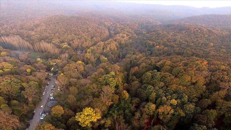 Mimar Sinan Kent Ormanı