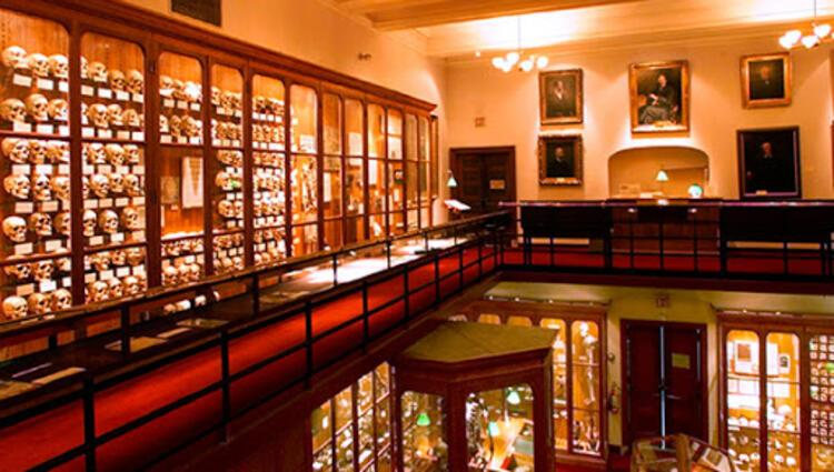 Mütter Museum of the College of Physicians of Philadelphia: