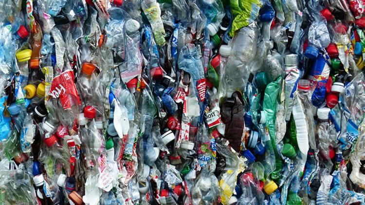 Her ay plastik toplama etkinliği düzenleyebilirsin