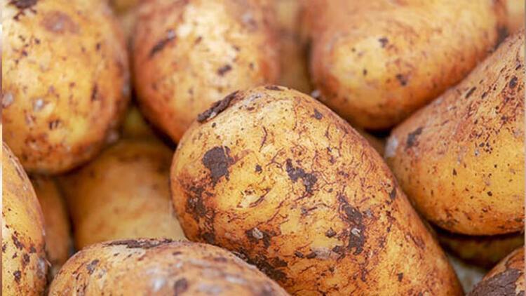 Kabuklu patates
