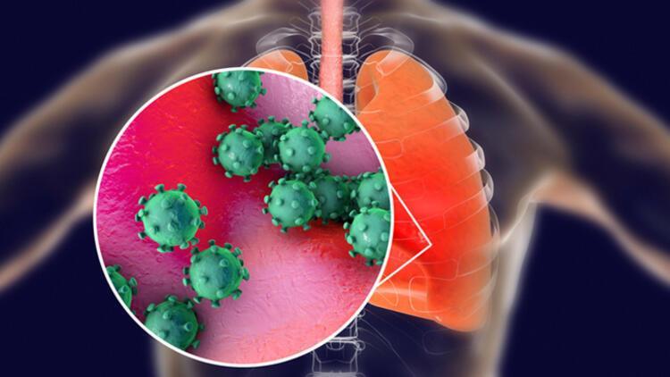 Farkında olmadan corona virüs geçirenlerde antikor yüksek mi