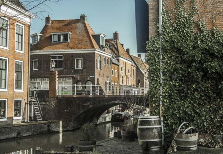 HOLLANDA: ŞANSA BIRAKMAYIN