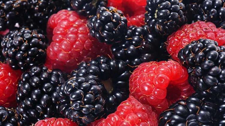 Orman meyveleri: Yıkayın ve dondurun