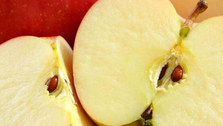 Elma: Kurutabilirsiniz