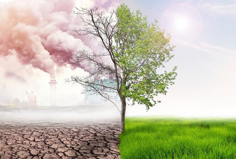 Kovid-19 salgınının başlaması ve yayılmasında iklim değişikliğinin rolü olduğunu düşünüyorum