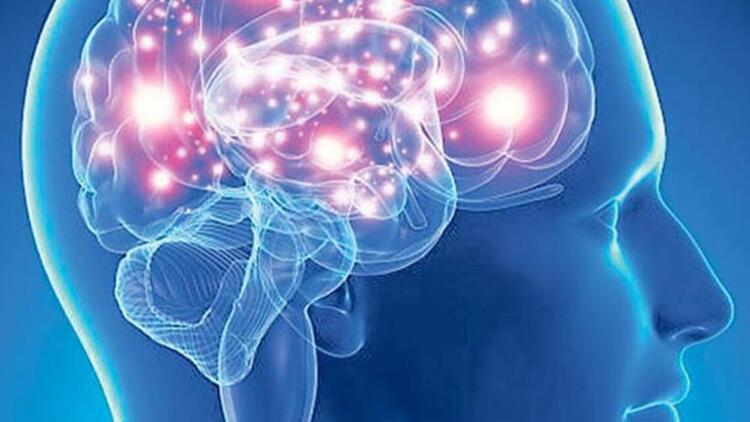 Hafızayı güçlendirir