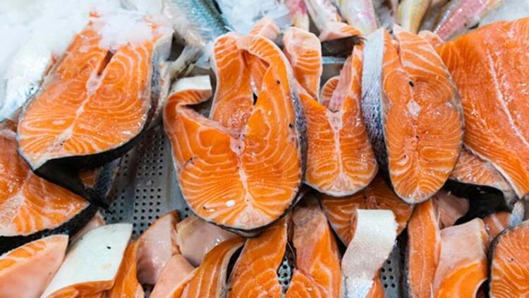 Somon ve ton balığı
