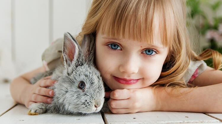 7. Tavşan