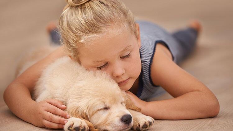 Evcil hayvan şampuanı olarak kullanın