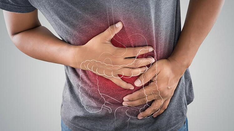 Mikroorganizmalar bağışıklık sistemimizde önemli rol oynuyor