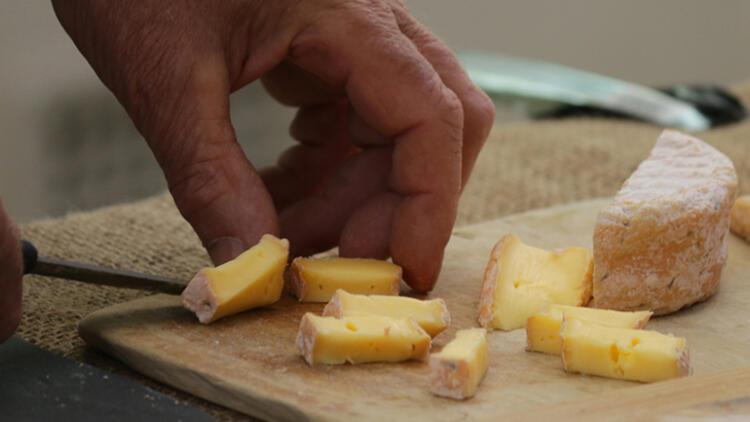 Eski peynirlerde laktoz oranı daha mı düşük