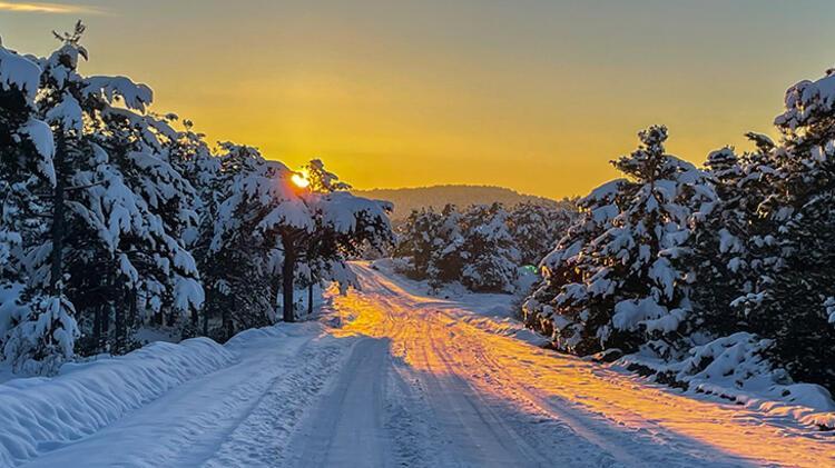 Yaylacık Ormanında kar güzelliği